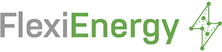 FlexiEnergy - Logo